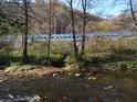 Potok z Malužína podtéká pod tratí a vlévá se to Svitavy.