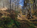Chráněné území Malužín se nachází na pravém břehu Svitavy za železniční tratí.