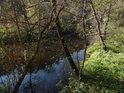 Řeka Svitava mezi městy Adamov a Brno