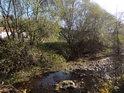 Zpola vyschlý tok Svitavy pod jezem v Bílovicích.