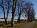 Stezka pro pěší a cyklisty na pravém břehu Svitavy v Blansku.