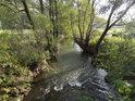 Fotografie řeky Svitavy, od pramene až po soutok s řekou Svratka v Brně.