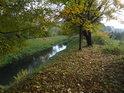 Svitava opouští Letovice regulovaným korytem.