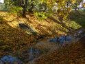 Řeka Svitava ve městě Svitavy